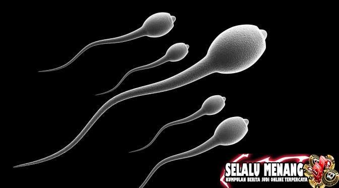 Manfaat Sperma Bagi Wanita Dan Pria