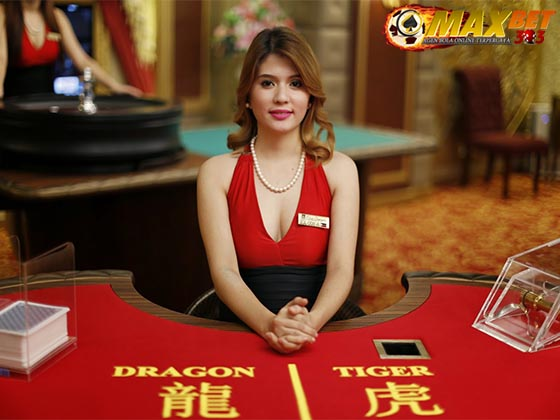tips menang dan tutorial bermain judi online dragon tiger